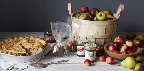 An Apple Picking Primer & OrchardTips