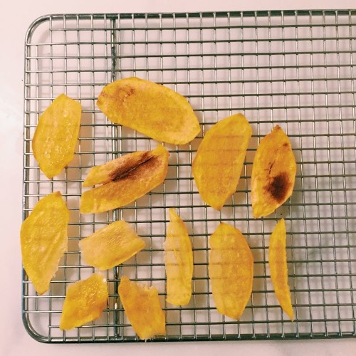How to Dehydrate Fruit in the Microwave (Yes, That's Right)