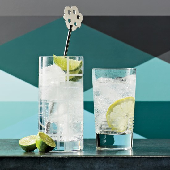 8 Ways to Upgrade Your Gin and Tonic