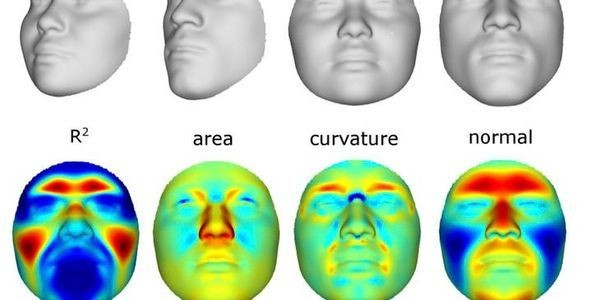 Scientists Reconstruct Faces From DNA Samples