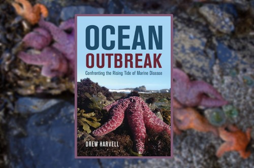 Ocean Outbreak by Drew Harvell - The Tales Of Marine Diseases Plaguing Our World's Oceans
