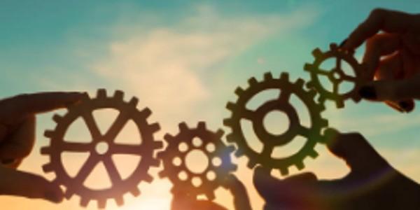 The Secret Weapon Against Complexity: Your Organization's Abundant Talent