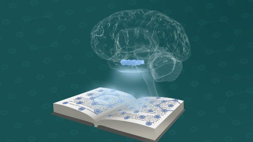 Thinking Uses Your Brain's Navigation System, New Report
