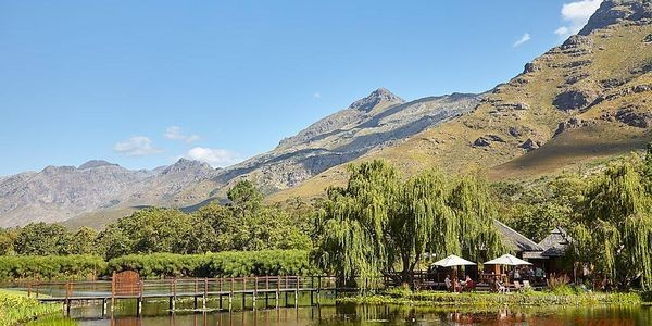 Five Wineries You Should Not Miss In South Africa