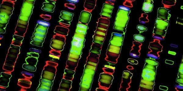 Your Next Prescription Could Be A Genome Sequence