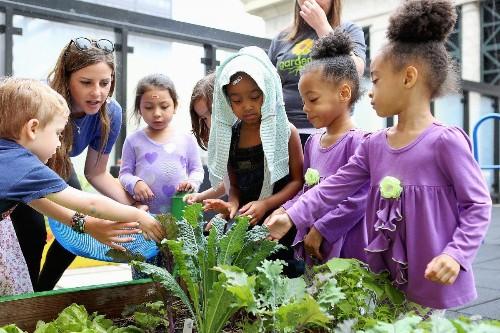 Chicago's Gardeneers Is Growing Young Minds Through Its Schoolyard Gardens