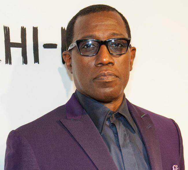 Wesley Snipes Sues IRS Over Abusive $17.5M Tax Bill, False Promise Of 'Fresh Start'