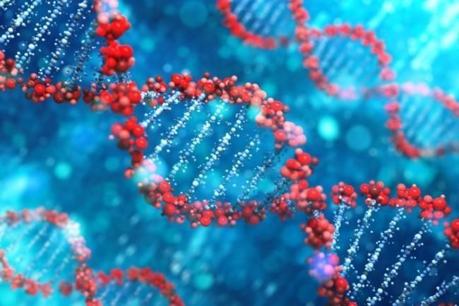 The Coming Era of Personal Genomics