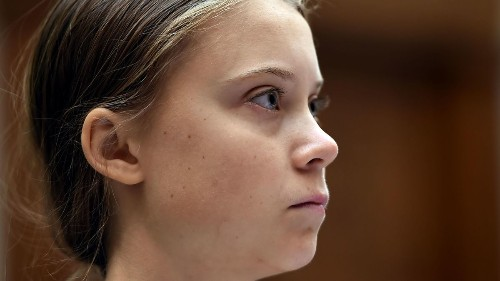 No One Seemed To Notice Greta Thunberg's Critique Of The Green New Deal