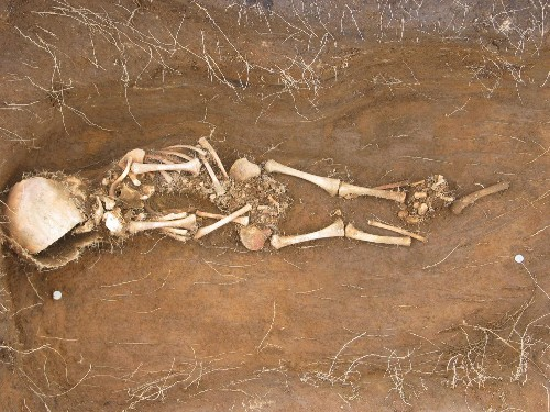 Archaeologists Find Viking Families Among Skeletons in Northern Iceland