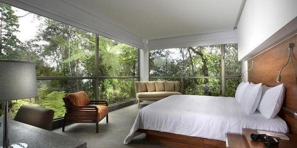How An Ecuadorean Entrepreneur Built South America's Most Luxe Jungle Hotel: Mashpi Lodge