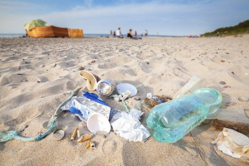National Science Foundation Awards Litterati Grant to Advance its AI for a Cleaner Planet