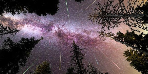 Meteors Incoming! Here's When And Where To See Shooting Stars This Summer
