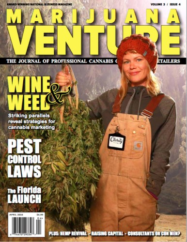 Marijuana Venture Magazine Goes Beyond 'Bongs And Thongs'