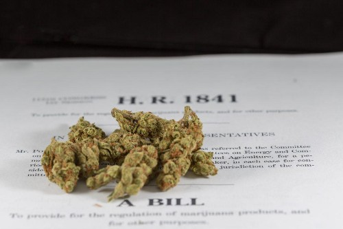These States Are Likely To Legalize Marijuana In 2018