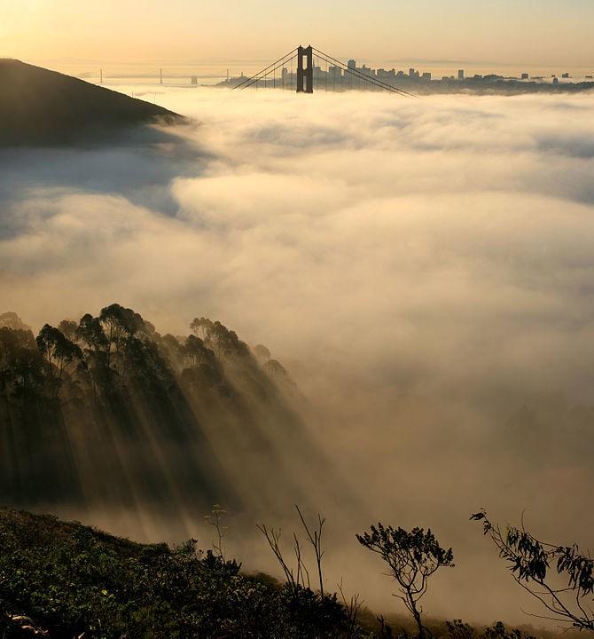 San Francisco Tech - Magazine cover