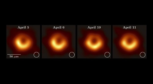 Why Everyone Loves Black Holes