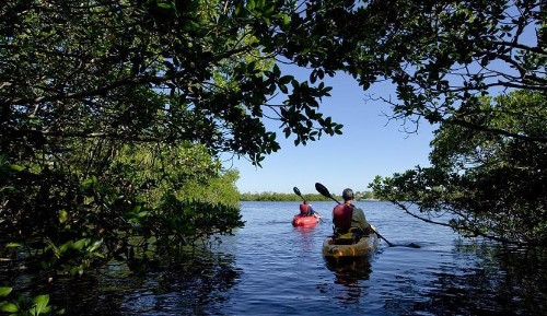 Sanibel + Captiva Islands: Florida's Best Family-Friendly Nature-Loving Escapes