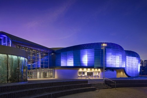New Wing At Aquarium Of The Pacific Celebrates Humanity's Role In Ocean And Planetary Health