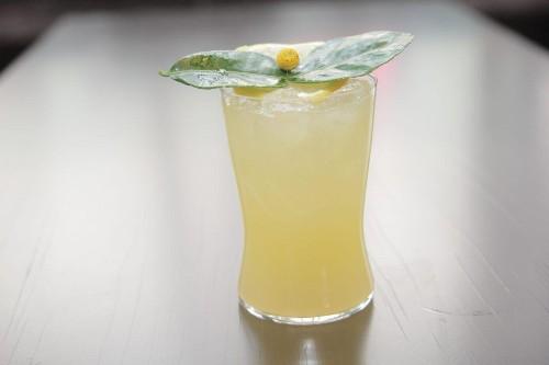 Data Drinks: The Cosmopolitan Las Vegas's $9.4 Million Cocktail