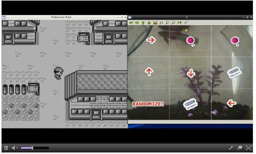 20,000 People Are Watching A Fish Play Pokemon On Twitch