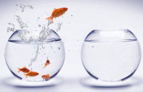 Why Getting Out Of Your Comfort Zone Is The Best Thing You Can Do For Your Career