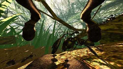 'Ant Simulator' Cancelled After Devs Blow Crowdfunding Money On Booze And Strippers