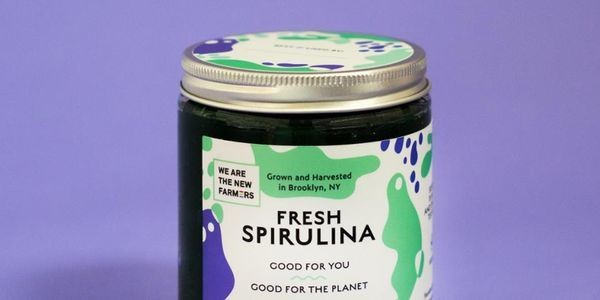 Spirulina Is A Viable Source Of Protein And Can Grow Anywhere, Even Brooklyn