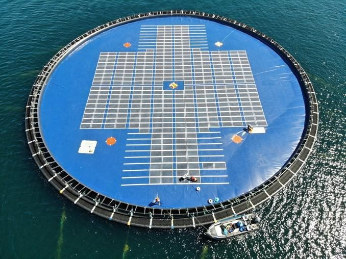 Floating Solar Opens New Markets For Renewable Energy