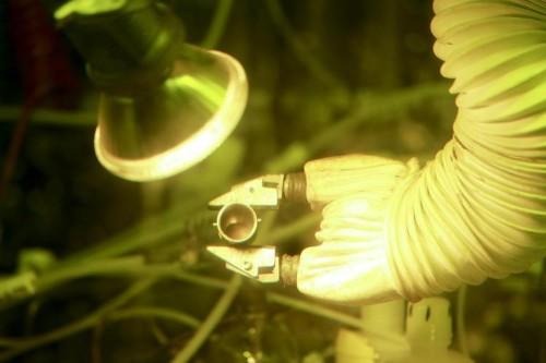 Mars Needs Plutonium, So DOE Just Made Some