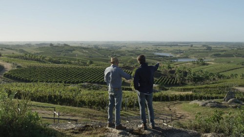 'It Starts With Wine': A New Documentary Series For Wine Lovers