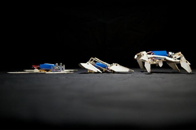 Origami Robots Fold Themselves And Walk Away