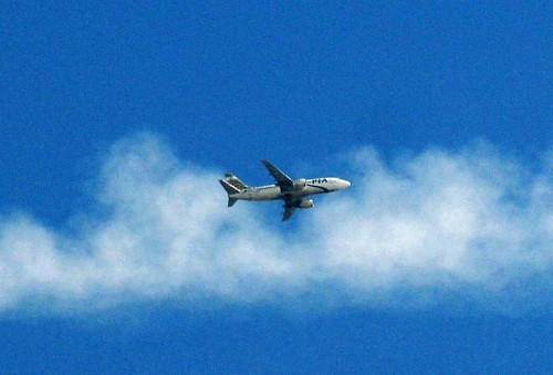Can The Airline Industry Survive Climate Change?