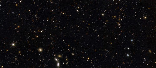 Did Our Universe's Structure Grow From The Top-Down Or From The Bottom-Up?