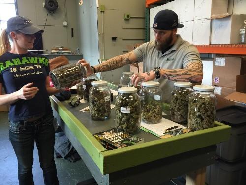 Cannabis Industry: 2020 Predictions