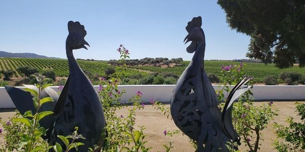 The Alentejo Is The New Region To Go To In Portugal