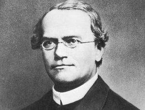 How Mendel Channeled Darwin