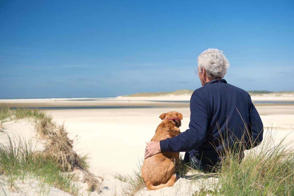 The Answer To Anti-Aging Therapies May Lie In Your Aging Dog