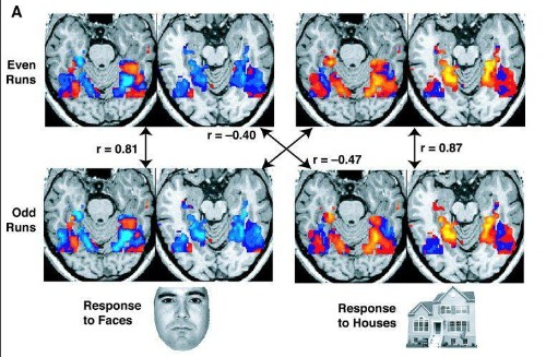 Tens Of Thousands Of FMRI Brain Studies May Be Flawed