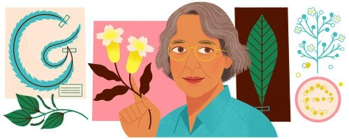 Sunday's Google Doodle Honors Botanist Ynés Mexía
