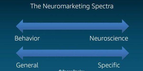 Nielsen: From Neuroscience To Behavioral Science