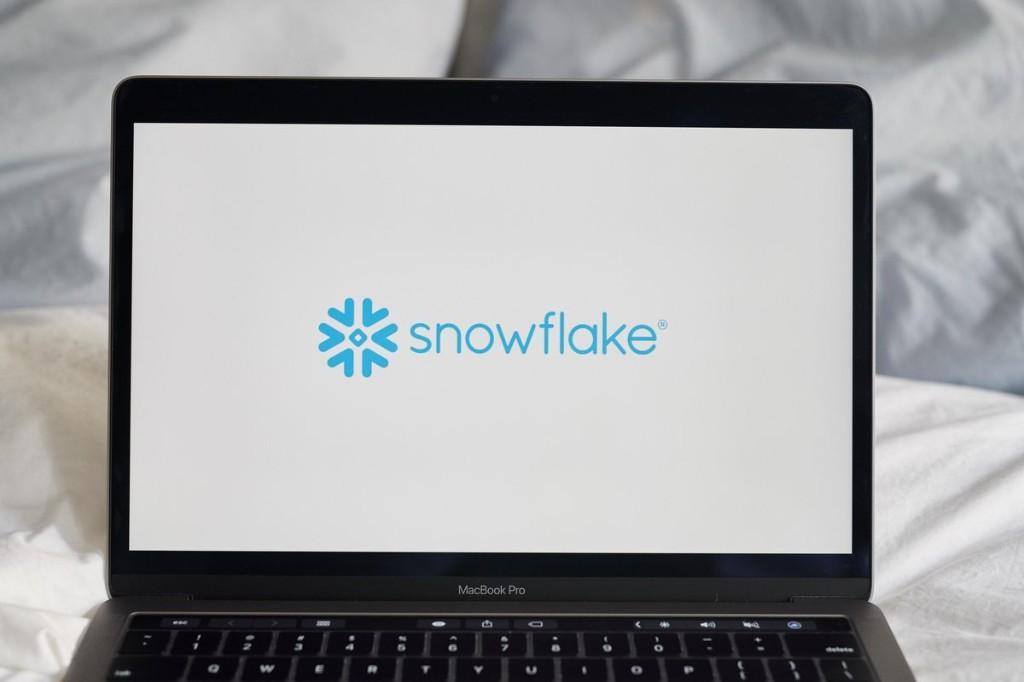 Snowflake: Valuable Lessons For Entrepreneurs