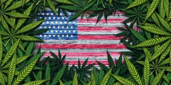 Marijuana Legalization Means Safer Borders And Less Smuggling, Study Shows