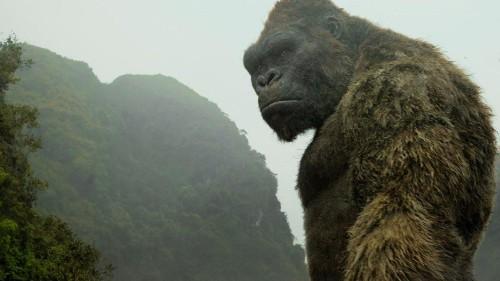 'Kong: Skull Island' Gives Warner Bros. Its Third Cinematic Universe