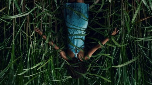 [Fantastic Fest Review] Characters Have Bad, Spooky Time On Too Much Grass 'In The Tall Grass' (Light Spoilers)