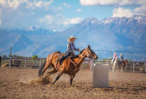 Don't Get Too Comfortable: Growth And Comfort Can't Ride The Same Horse