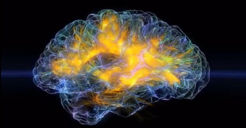 A Real-Time Visualization Of Electrical Activity In The Brain Is Here And It's Beautiful