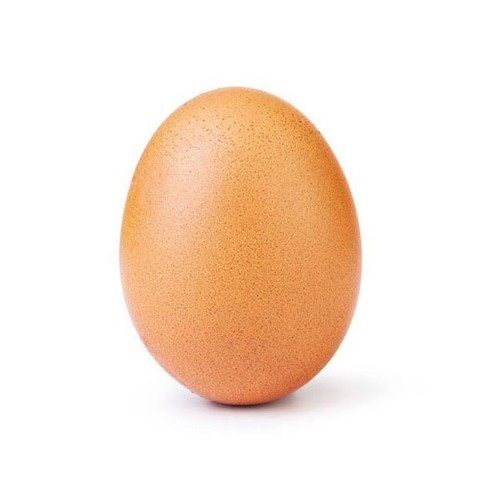 """""""World Record Egg"""" - How Wacky Is The Future Of Marketing Going To Be?"""