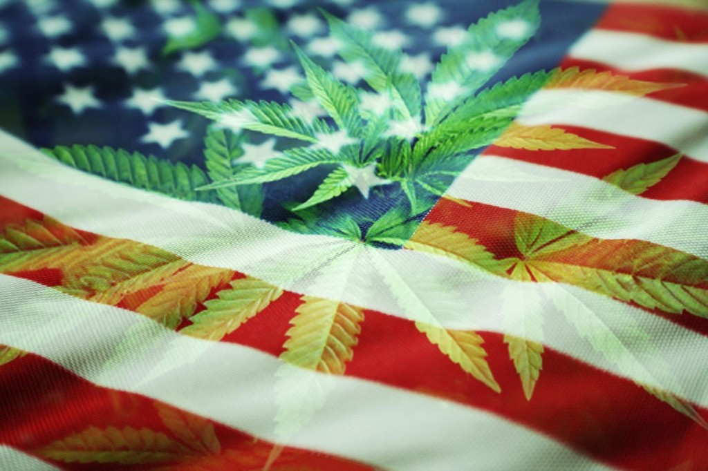 U.S. Cannabis Stocks: A Good Investment In A Bad Economy