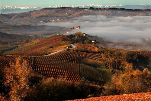 Why You Really Should Visit Italy's Outstanding Barolo Wine Region